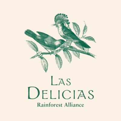 Rainforest Alliance Las Delicias