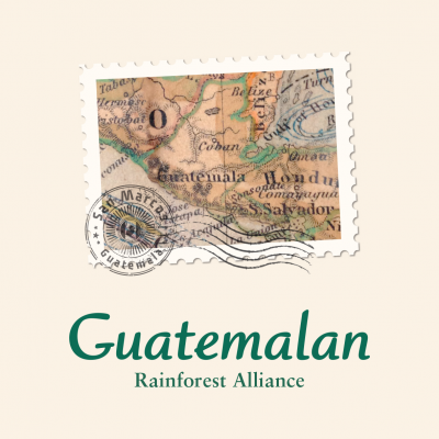 Rainforest Alliance Guatemalan