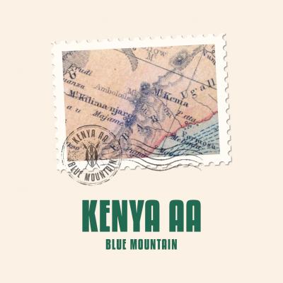 Kenya AA Blue Mountain