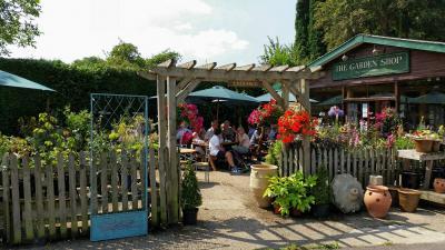 Cafe at the Garden Shop, Colyton image